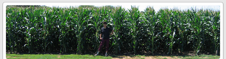 Standing in the outfield of the Field of Dreams, Iowa (2006)