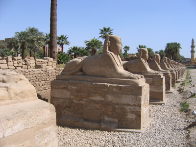 Ave of the Sphinxes