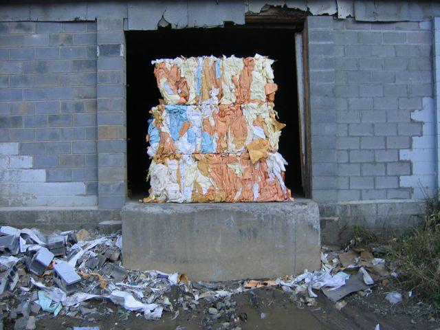 fall2008_02.jpg