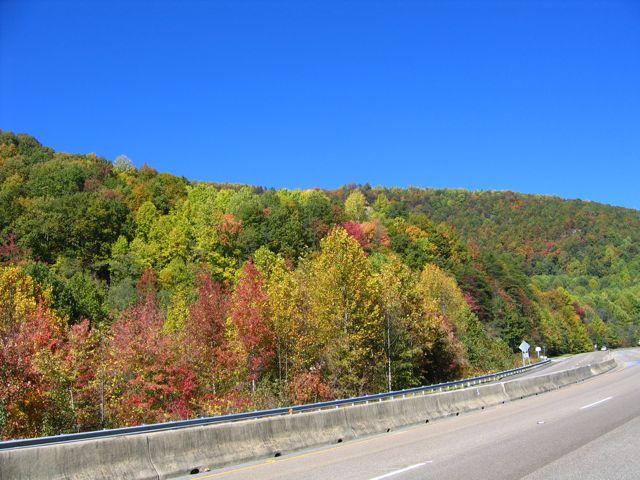 fall2008_05.jpg